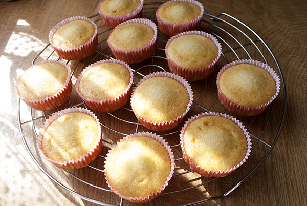 Vanille-Cupcakes mit Kokos-Frosting