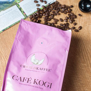 cafe-kogi-thumbnail